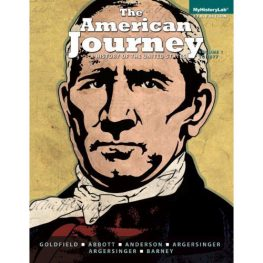 the american journey book image