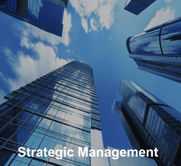 strategic management copy